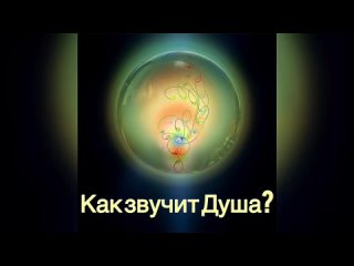 Видео от Светланы Радченко
