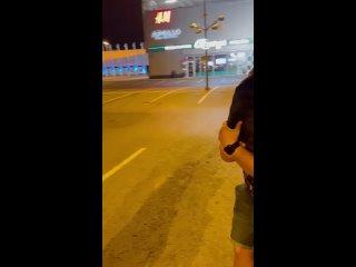 """Видео от питомник """"TAIRIS"""""""