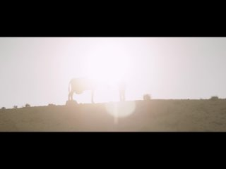 Кинотеатр «Мир» в Казани kullanıcısından video