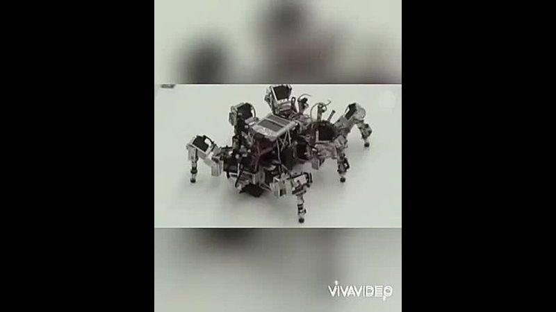 Видео от Александра Будникова