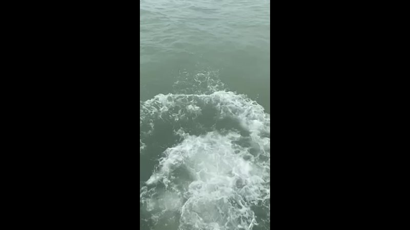 Video 90af0d9a6e5ff35cfbf1557d28f20125