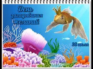 image (5).mp4