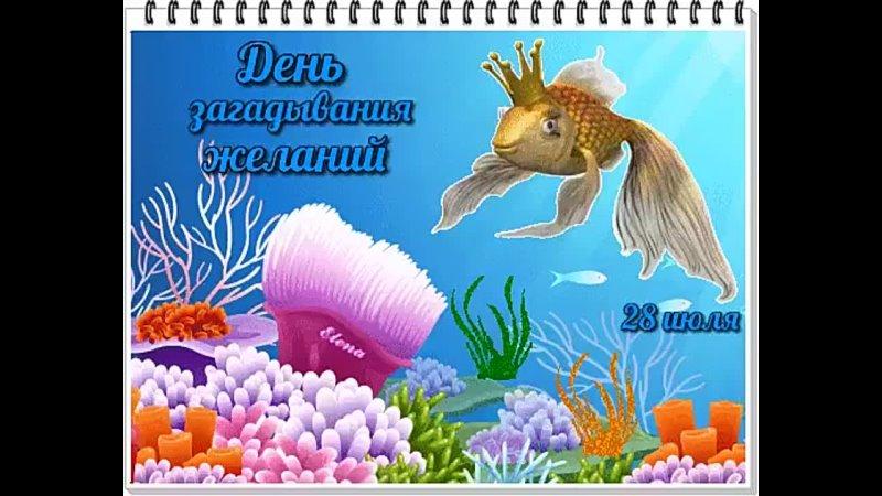 Image 5 mp4