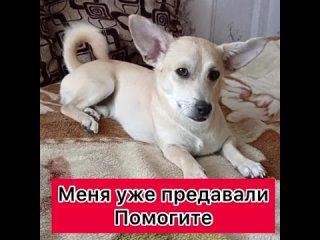 Olga Kramorovatan video