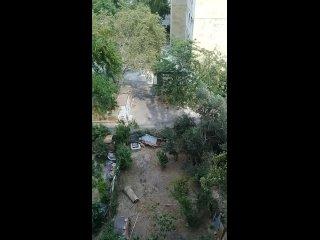 Video by Akhiles Akhil