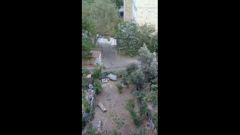 Видео от Ахилеса Ахила