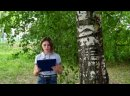 Видео от Новонадеждинскаи Библиотеки