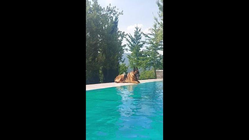 Видео от Жанны Ковалёвой