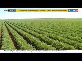 Видео от Администрация Городищенского  района