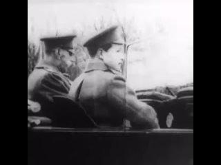 Цесаревич Алексей (480p).mp4