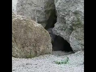 Опасная Земля