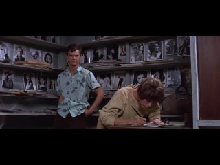 La rebelde. Inside Daisy Clover 1965 1080p vose