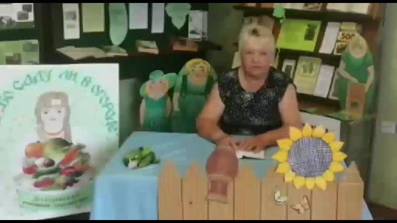 Рецепты засолки огурцов Степанова Наталья Михайловна