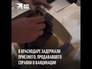 В Краснодаре задержали приезжего, продававшего справки о вакцинации