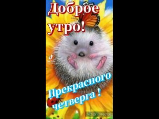 Video by ОНЛАЙН-встречи для жителей Тузлукушевских сёл