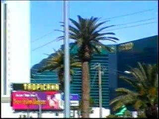 Шоу Любимое и только для вас   в Лас Вегас 1 часть