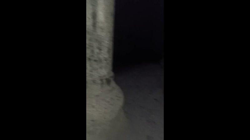 Видео от Рамзии Хасановой
