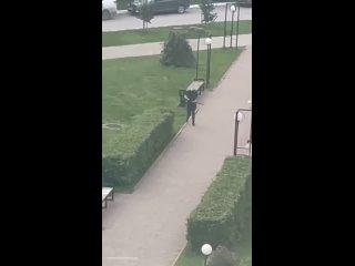 Сегодня в пермском университете открыл стрельбу 18...