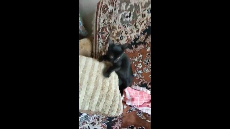 Видео от Нины Субботиной