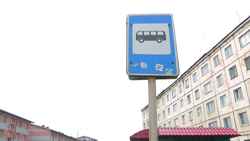 Их электробусом по нашему асфальту?