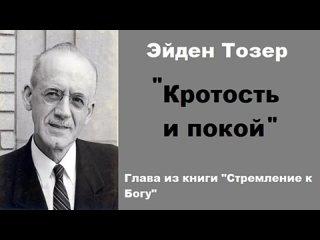 ЭЙДЕН ТОЗЕР - КРОТОСТЬ И ПОКОЙ
