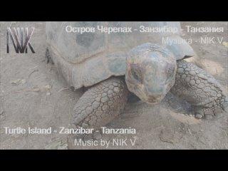 Turtle Island (Остров Черепах)