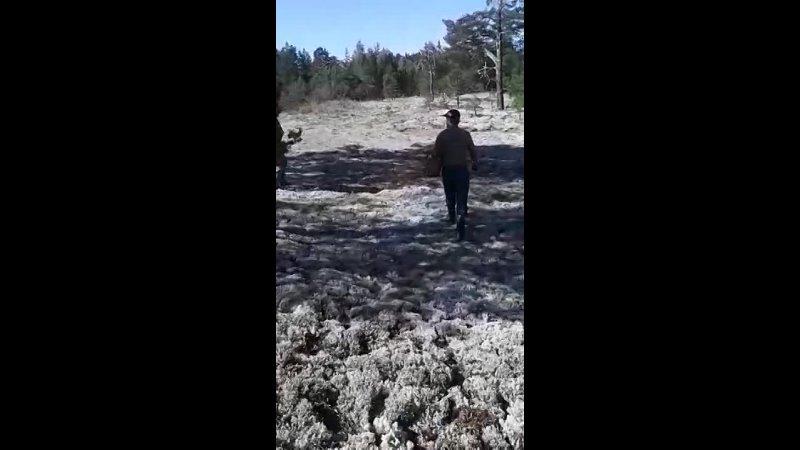 Видео от Светланы Климаковой