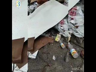 Вместе с костями лежали чеки🧾В Ессентуках на контейнерной площадке обнаружили гниющие остатки мясных туш, упакованные в полиэт