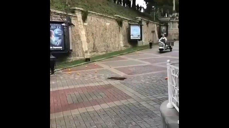 Сейчас снимают в Кисловодске фильм 🍿🎬 Чебурашка в главной роли Сергей Гармаш 🤩Он крокодил Гена Сейчас вот рванет на моторо