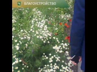 Обход Ленинского района.mp4