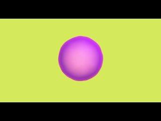 Видео от Spline 3D ()