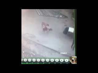 Видео от Хи-хи Ха-ха