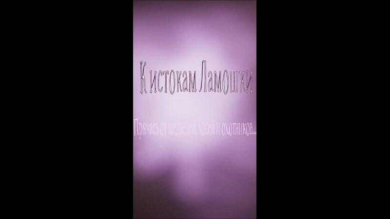 Видео от Павла Мирошниченко