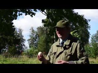 Видео от Бориса Юрьева
