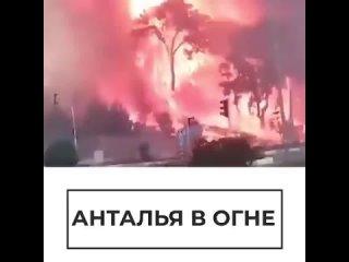 В районе города Манавгат в турецкой провинции Анталья вспыхнул сильный лесной пожар, огонь подбирается к жилым домам🧯🔥🚒Пострад
