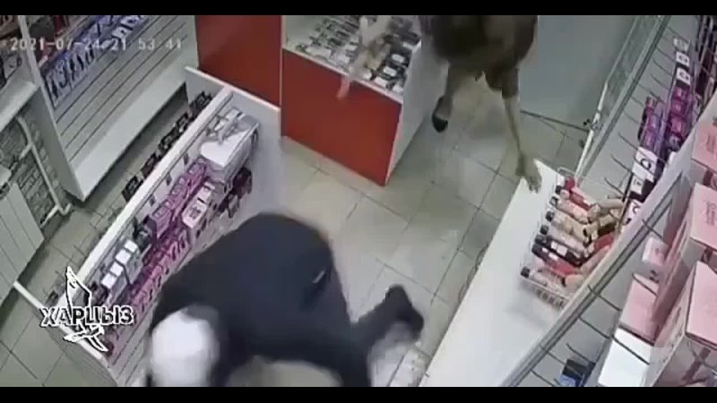 В Новокузнецке грабителя секс шопа прогнали с помощью фаллоимитатора