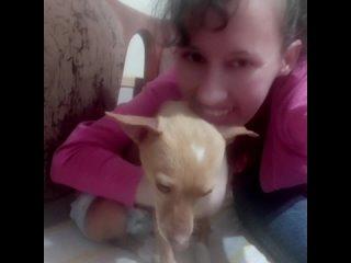 Хаёт. Приют для бездомных собак в Ташкенте kullanıcısından video