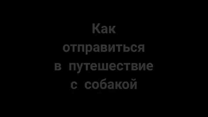 2920b15324e61bfc9e1ef310af40c898.mp4