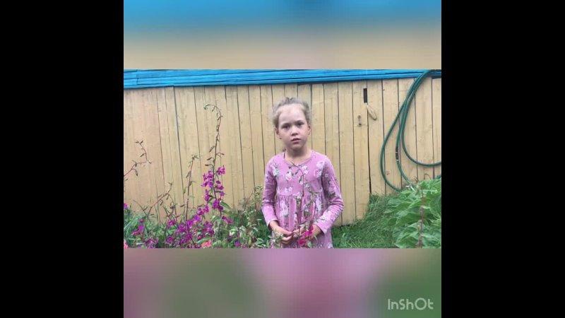 Видео от ЦЕЛЕГОРСКИЙ ДОМ КУЛЬТУРЫ