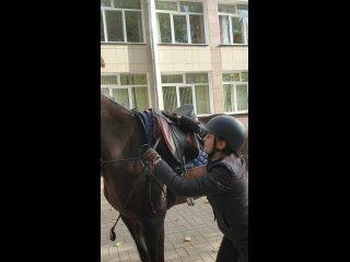 Проснулся, умылся, сел на коня и поскакал. На выбо...