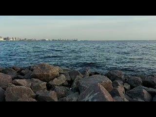 Video by Gennady Nastenko