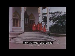 ELEPHANTS IN THE TEAK FOREST 1967