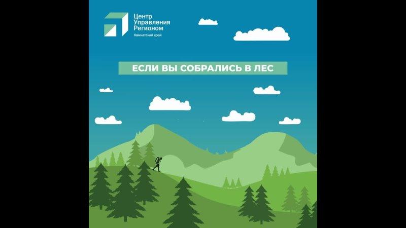 Видео от ЦУР Камчатского края