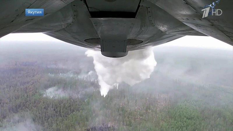 На территории России тушат почти 270 очагов лесных пожаров