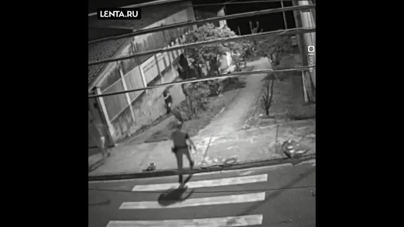 Удивительный вечер в Бразилии, в котором все куда-то бегут) Собака за кошкой, полиция за преступником,... [читать продолжение]