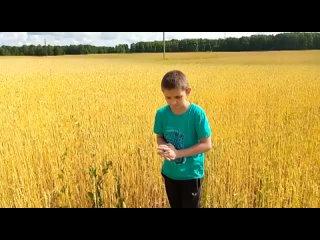 Valeri Pyatkovtan video