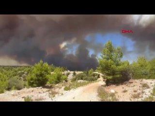 Video by Переезд в Турцию
