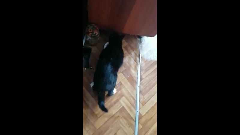 Видео от Наташи Анохиной