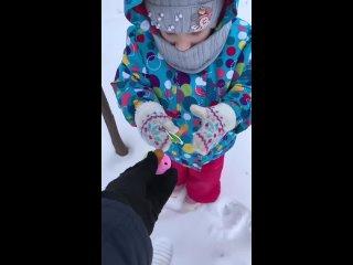 Видео от Нелли Чеботаревой