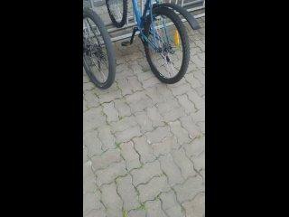 Video by Белгород ПЕРВЫЙ